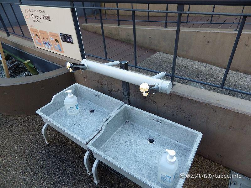 タッチング水槽