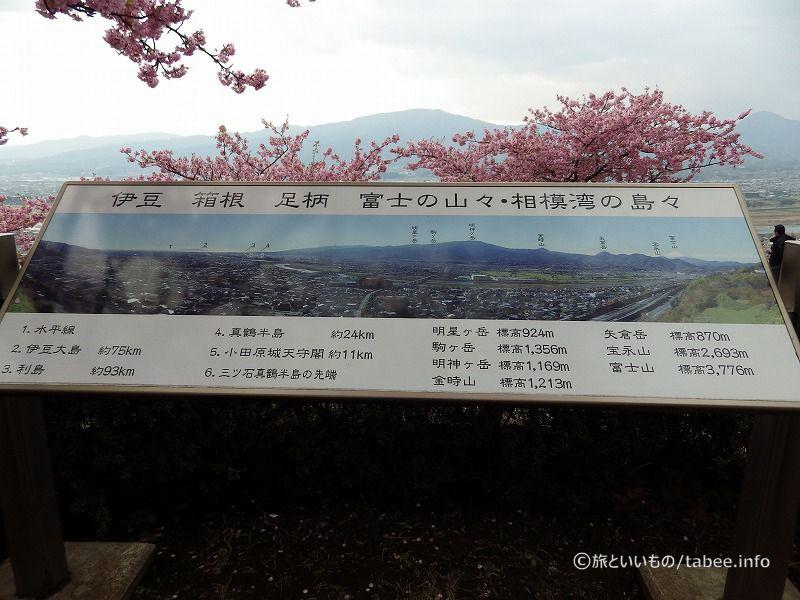 天気が良ければ富士山も見れます