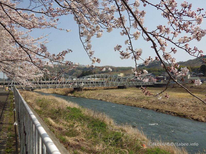 桜と平山橋