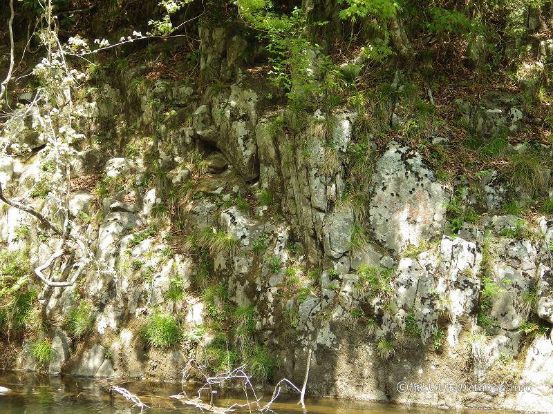向かい側の岩の雰囲気