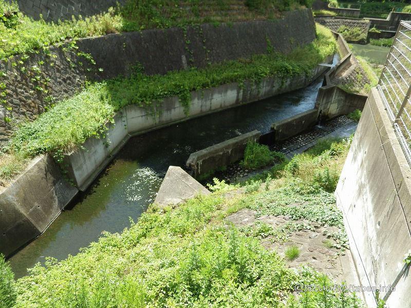 堀切沢の水路