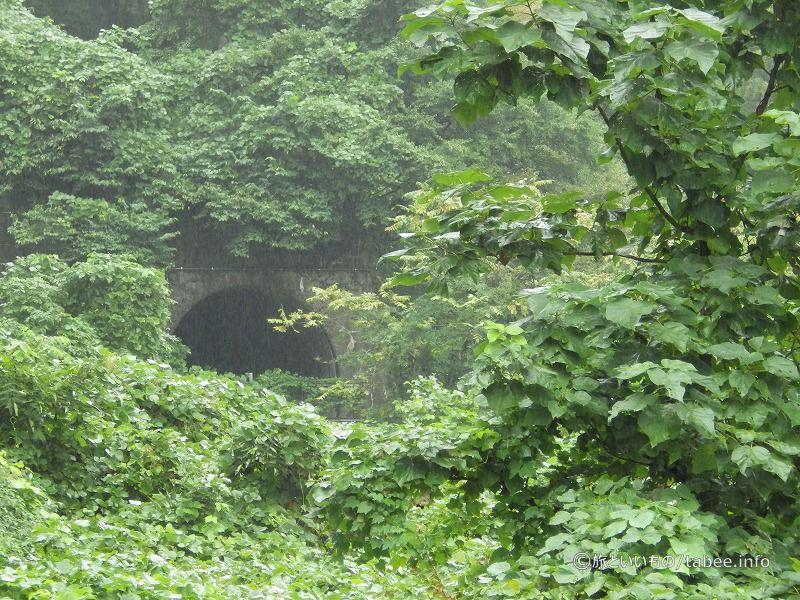 トンネルが隠されそう