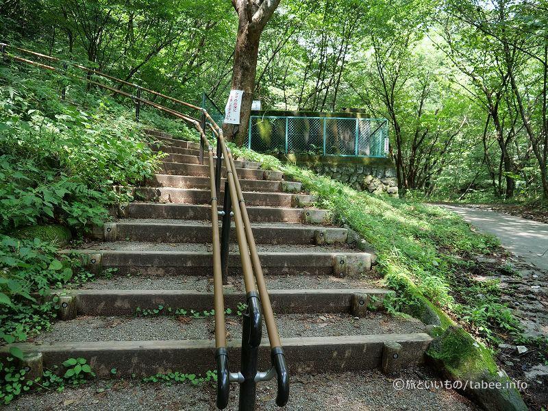 この階段を上るとめがね橋の上に出ます