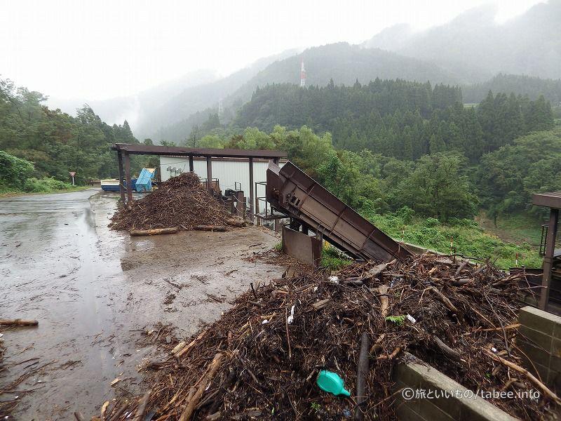 流木やゴミなどが積まれています