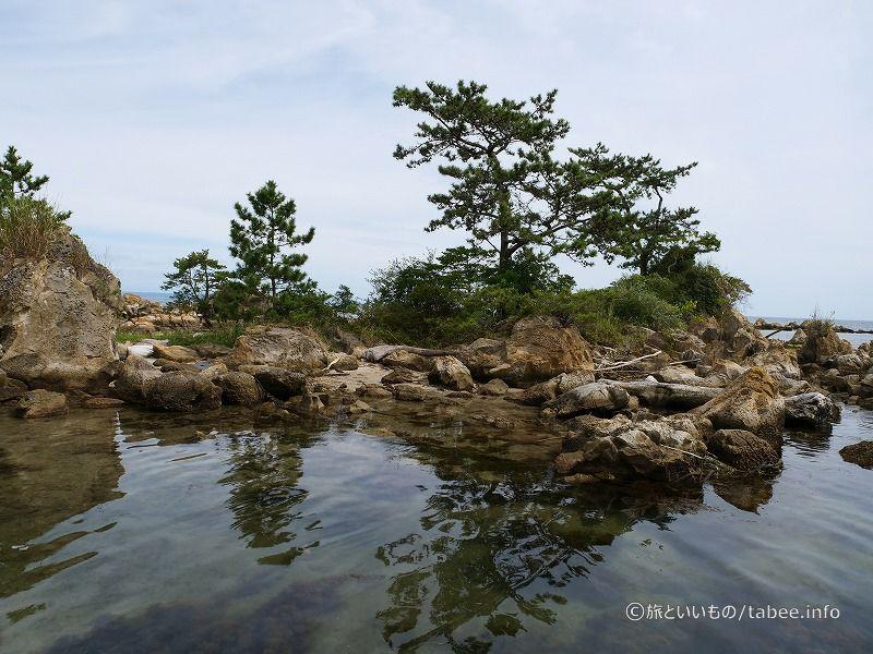松島以外にも小島がぽつぽつありました