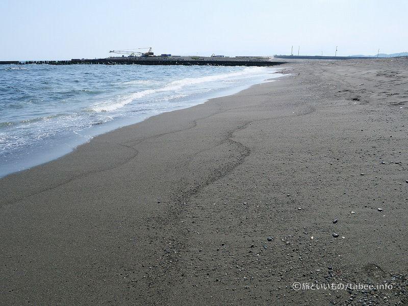相模川河口の砂州