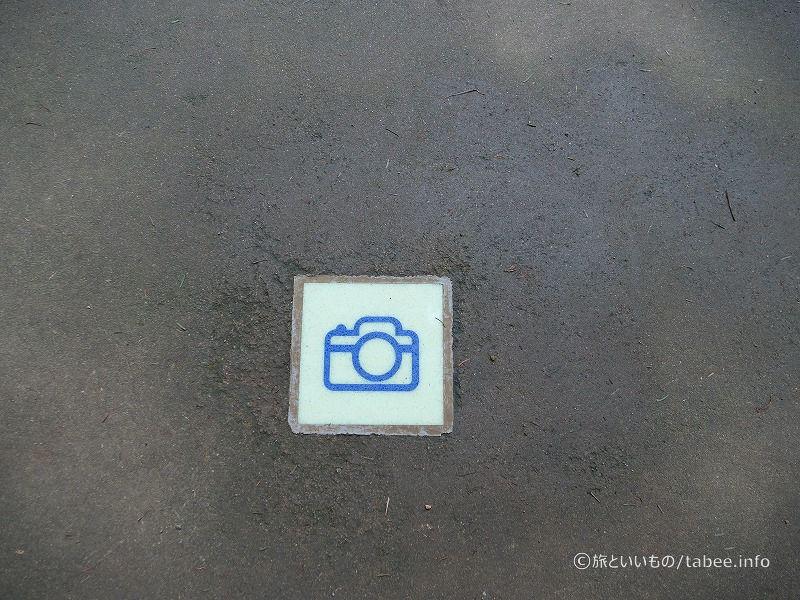 所々地面に撮影ポイントのタイルが