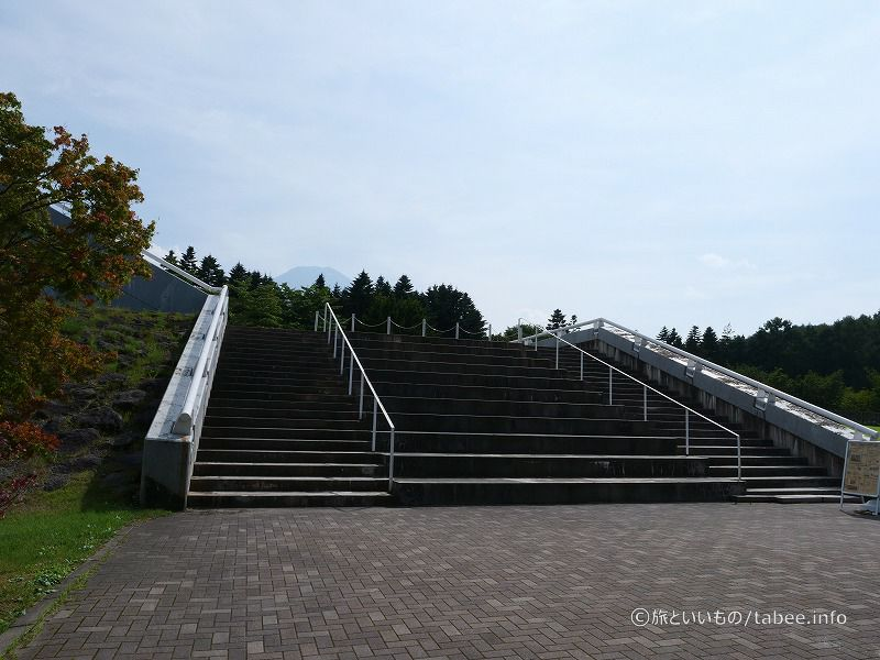 真ん中は足が長い人用階段