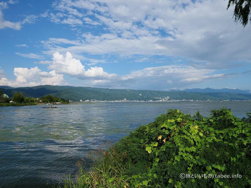 緑の印象の諏訪湖