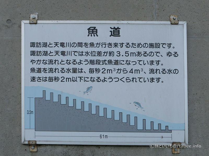 階段式魚道
