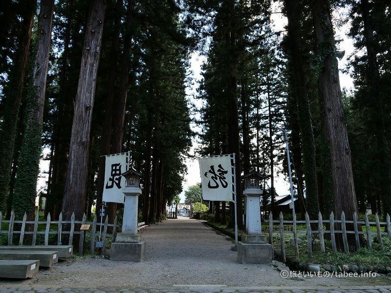 御廟から眺めた杉木立