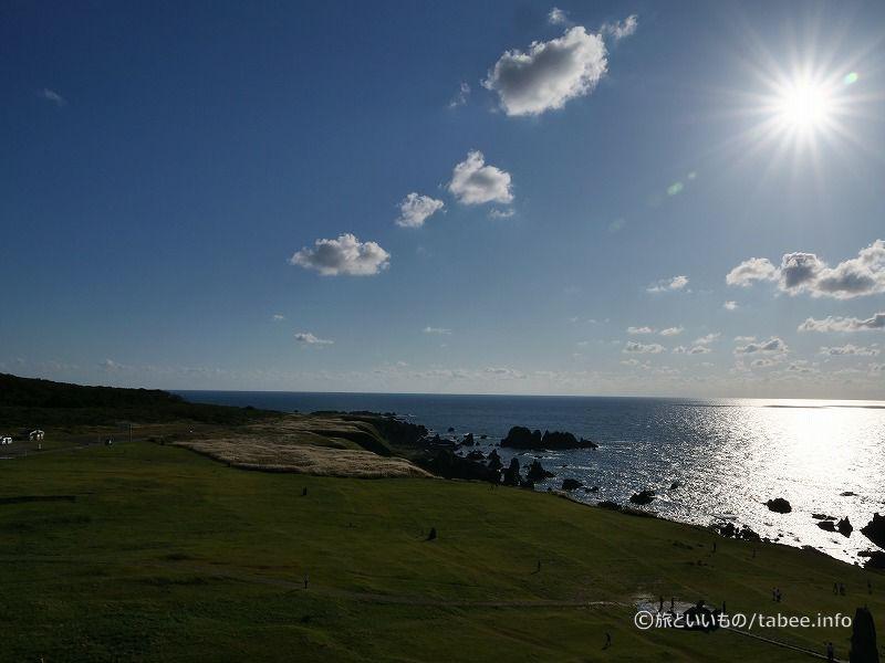 芝生の緑と海の青