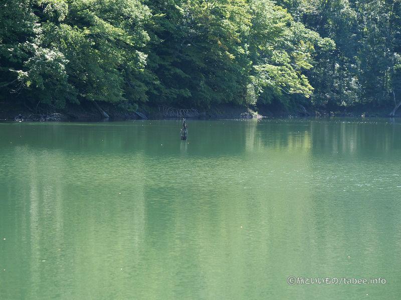 ダム湖のような色合い